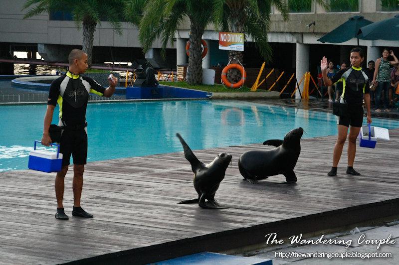 Manila Ocean Park And Star City The Wandering Couple
